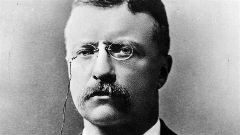 Theodore Roosevelt was an American statesman, author, explorer, soldier, naturalist, and reformer who served as the 26th President of the United States
