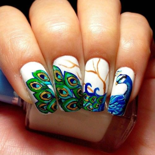 Peacock style nail art design