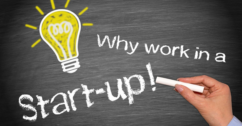 Why work in a Start-up?