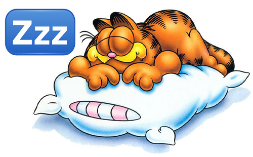 You MUST Sleep well, especially if you look as cute as Garfield xD