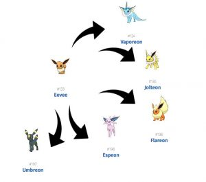 tips and tricks in pokemon go eevee evolution