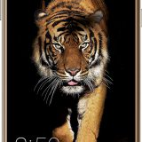Best Amazon coolpad offers !! Buy Coolpad At Amazon Great Indian Festival Sale on 21st September
